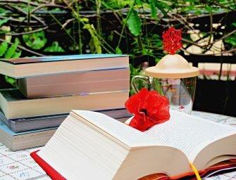 20 de cărți de citit în vacanță: Cele mai frumoase zile libere încep și se termină cu cărți