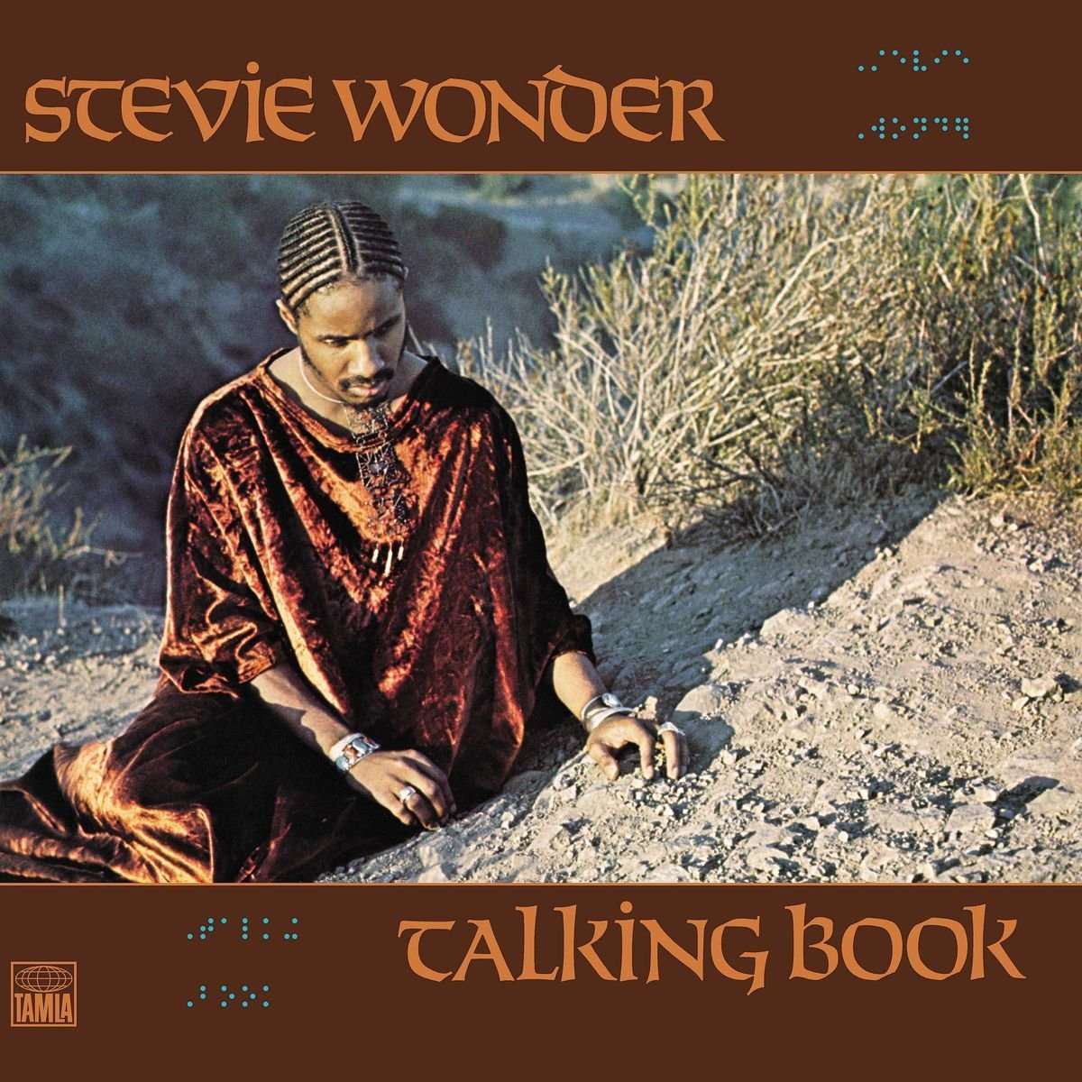 Talking Book- Vinyl