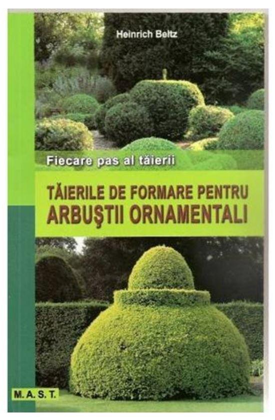 Taierile De Formare Pentru Arbusti |