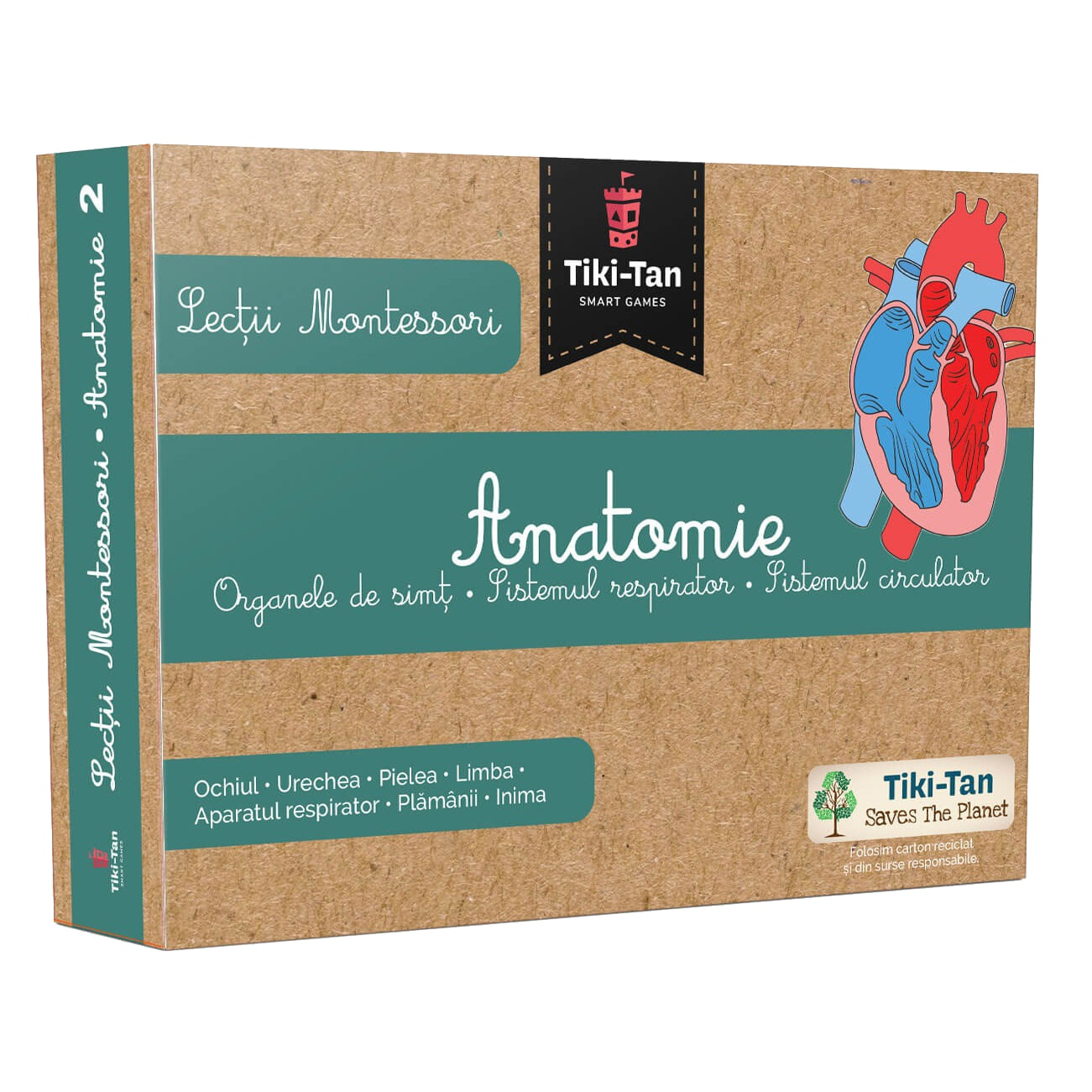 Lectii Montessori - Anatomie |