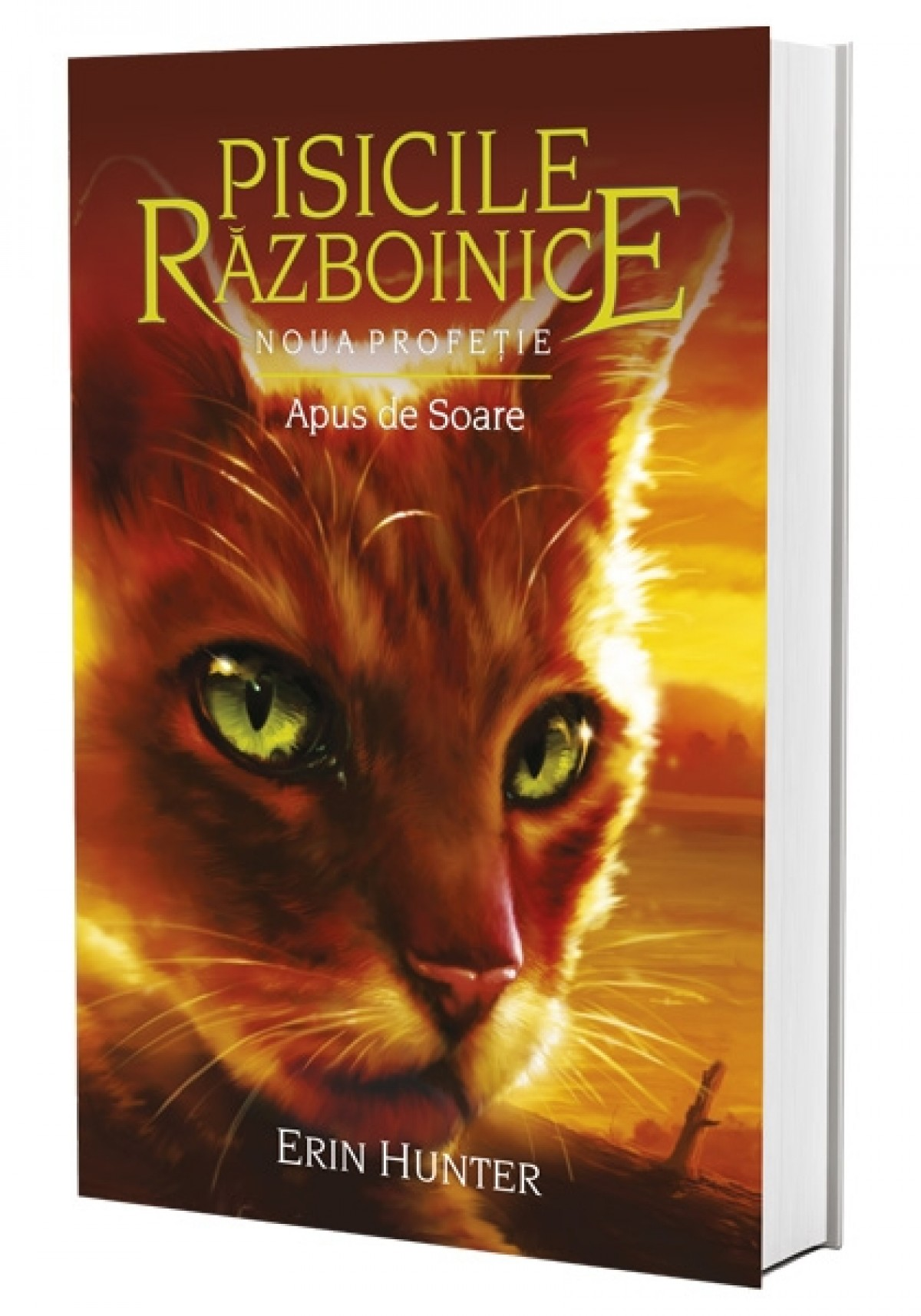 Imagine Apus De Soare - Erin Hunter