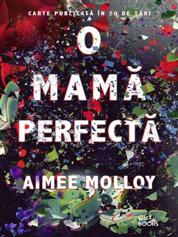 O mama perfecta | Aimee Molloy