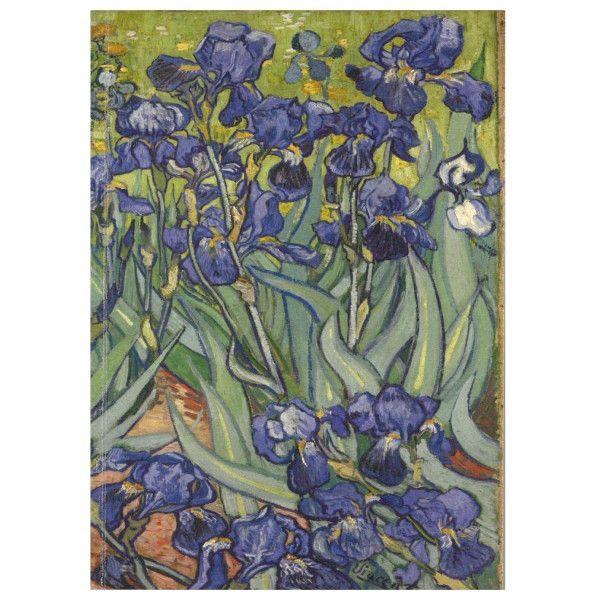 Carnet mediu - Irisi de Vincent van Gogh thumbnail
