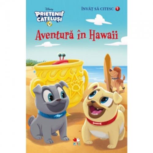 Disney. Invat sa citesc. Prietenii catelusi. Aventura in Hawaii (nivelul 1) thumbnail