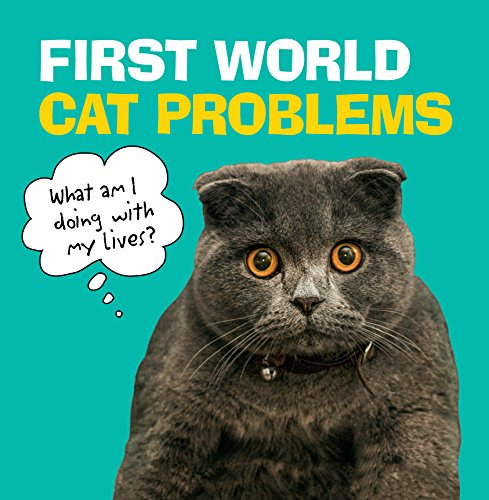 First World Cat Problems thumbnail