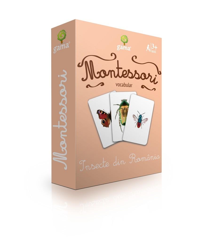 Carti De Joc Montessori - Insecte Din Romania |