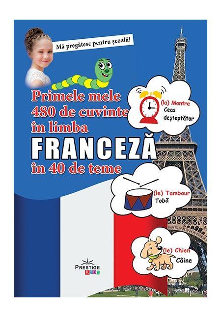 Primele mele 480 de cuvinte in limba franceza in 40 de teme thumbnail