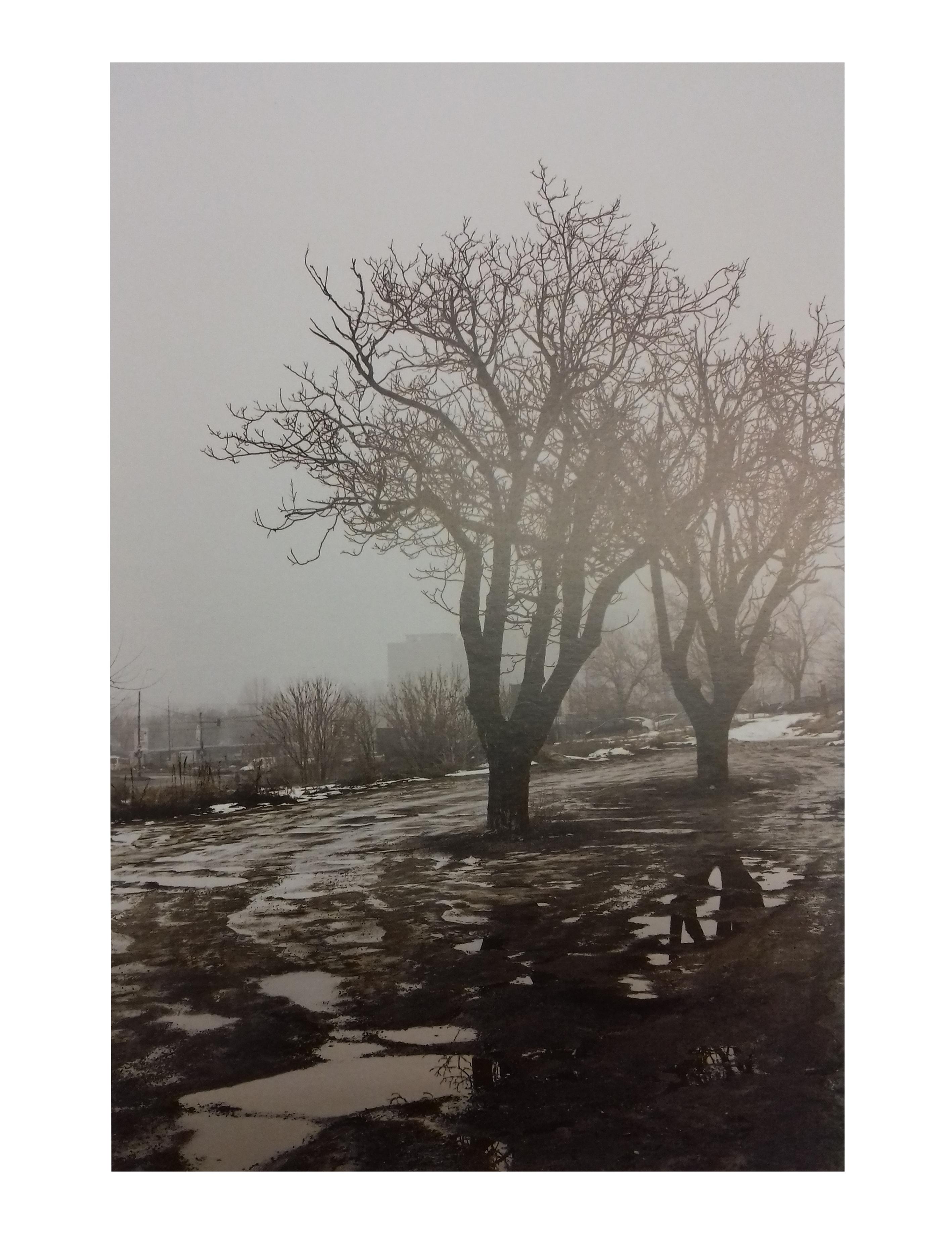 Album de fotografie: Sieranevada
