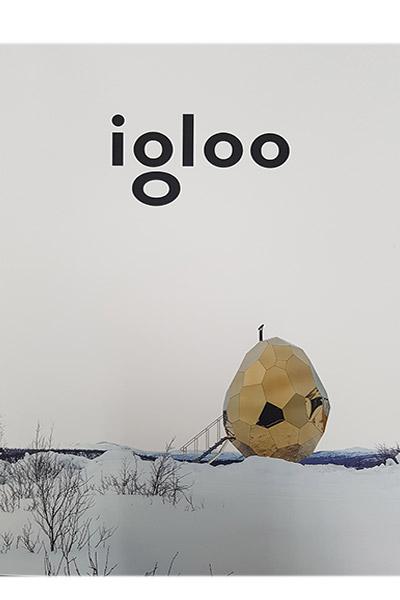 Revista Igloo Nr. 181 Decembrie 2017/Ianuarie 2018