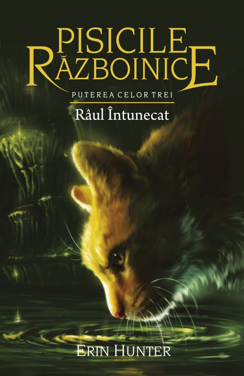 Imagine  Raul Intunecat - Erin Hunter