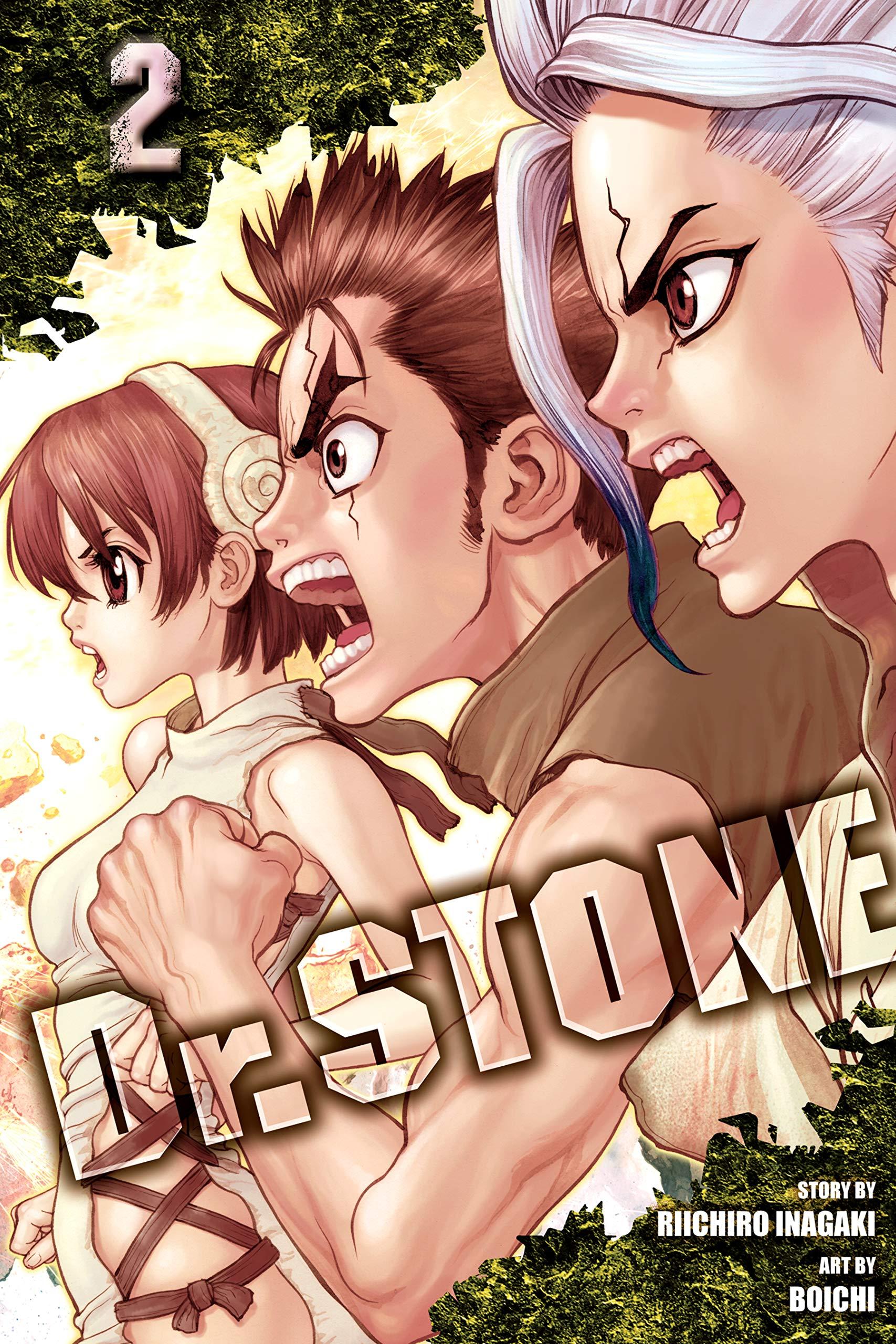 Dr. STONE, Vol. 2 thumbnail