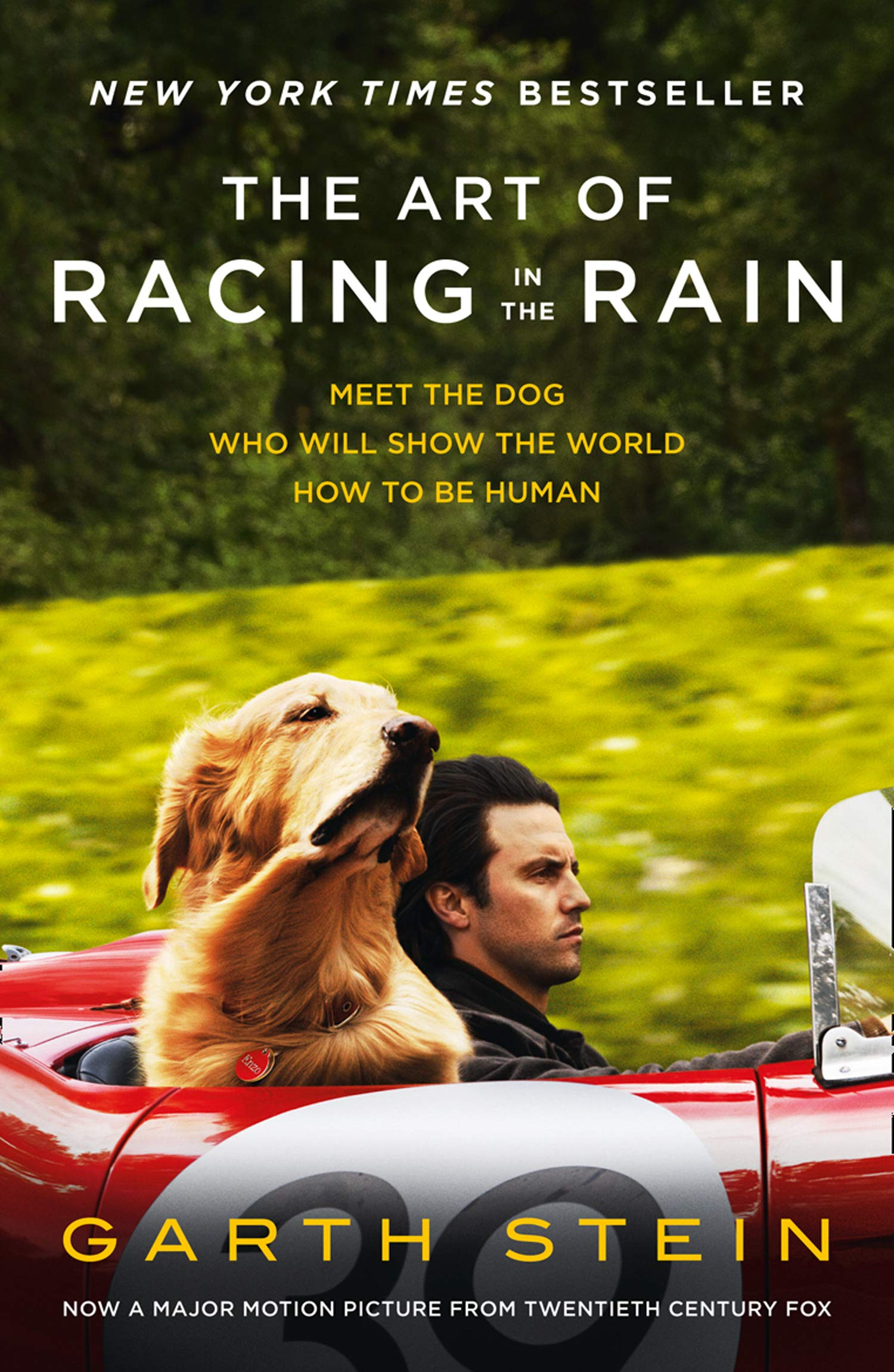Art of Racing in the Rain thumbnail