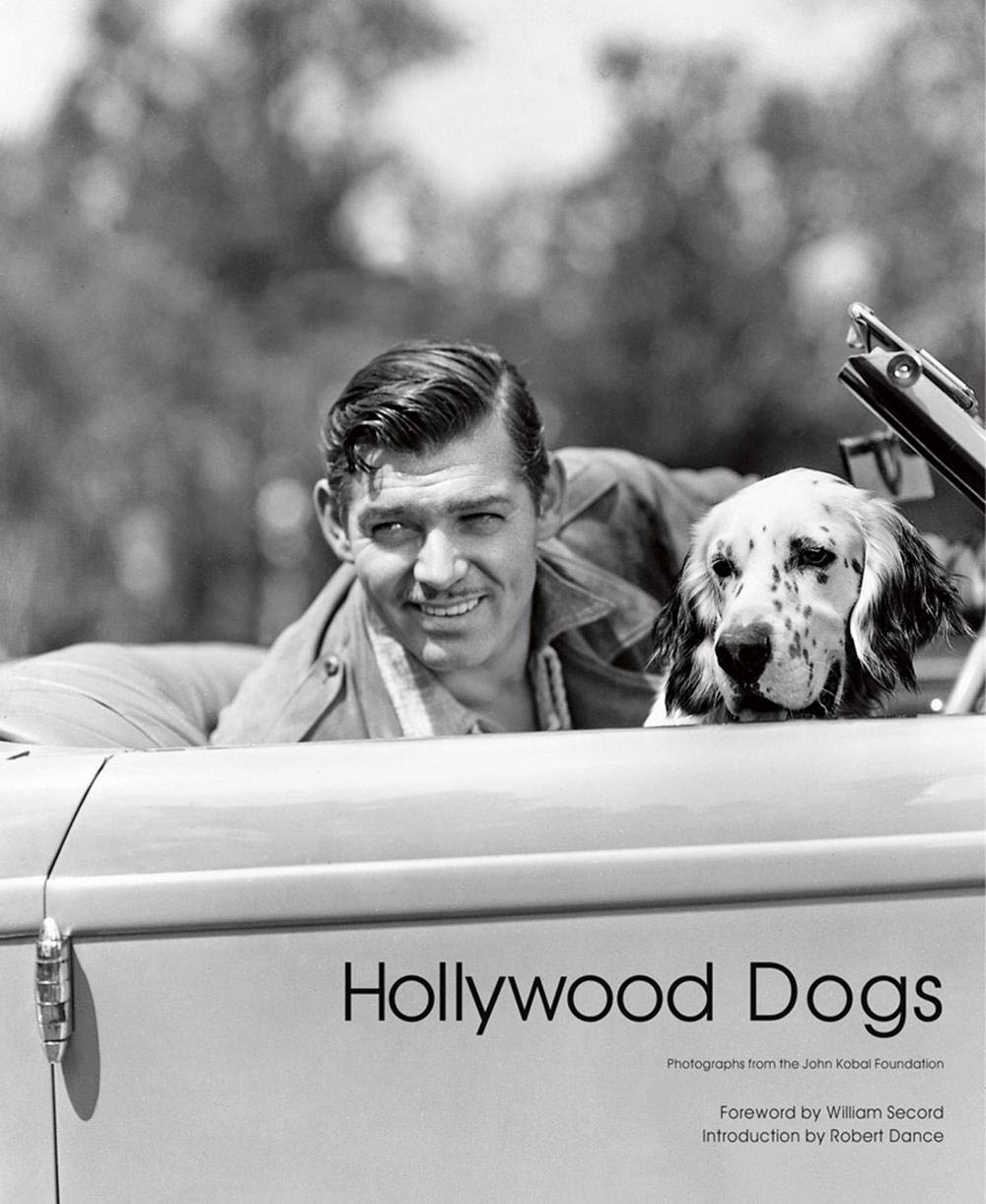 Hollywood Dogs thumbnail
