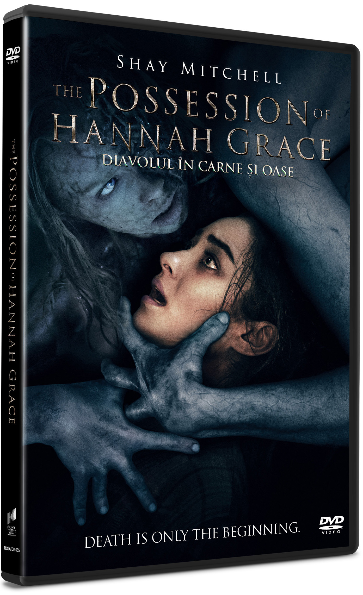 Diavolul in carne si oase / The Possession of Hannah Grace thumbnail