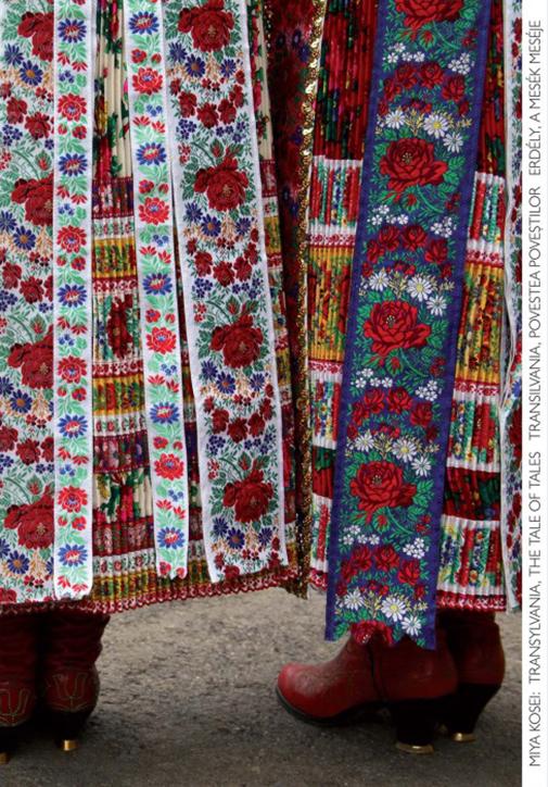 Transilvania, povestea povestilor | Miya Kosei