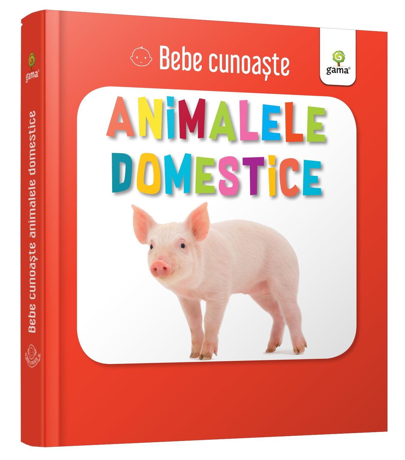 Animalele domestice thumbnail
