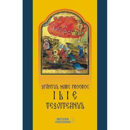 Sfantul Mare Prooroc Ilie Tesviteanul. Viata, minunile, legendele si obiceiurile | Costion Nicolescu