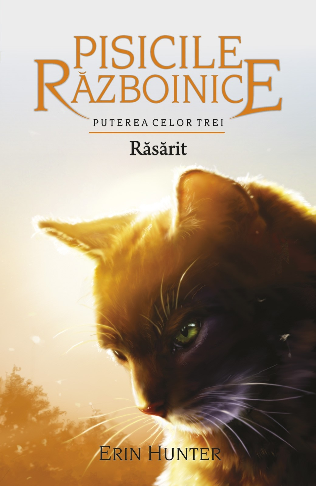 Imagine Rasarit - Erin Hunter