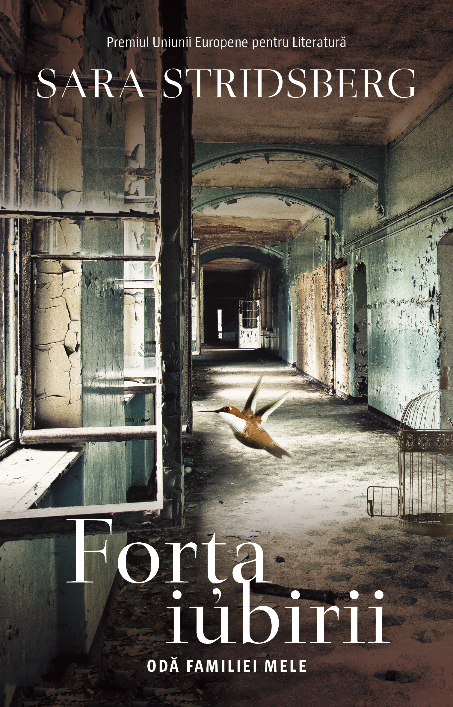 Forta iubirii | Sara Stridsberg