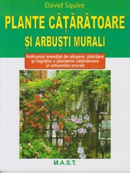 Plante cataratoare si arbusti murali
