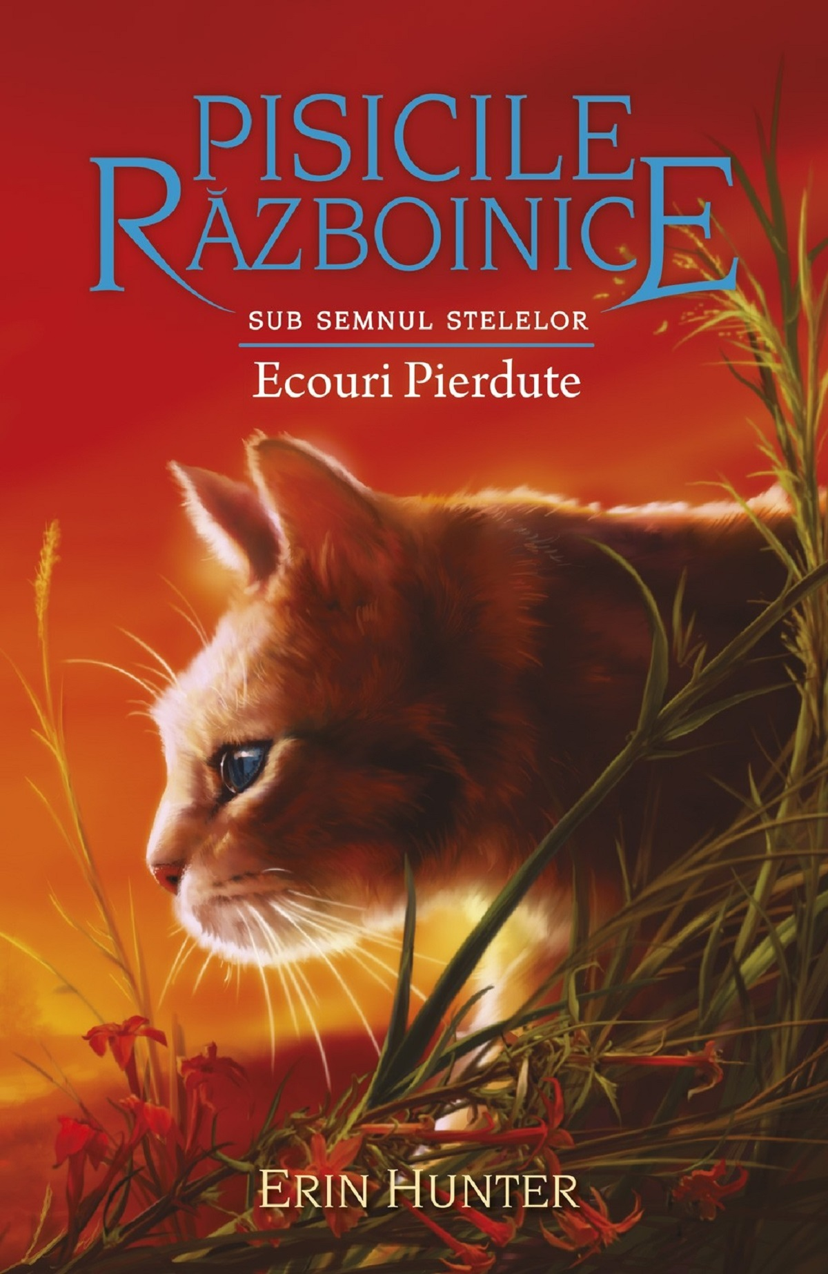 Imagine Ecouri Pierdute - Erin Hunter