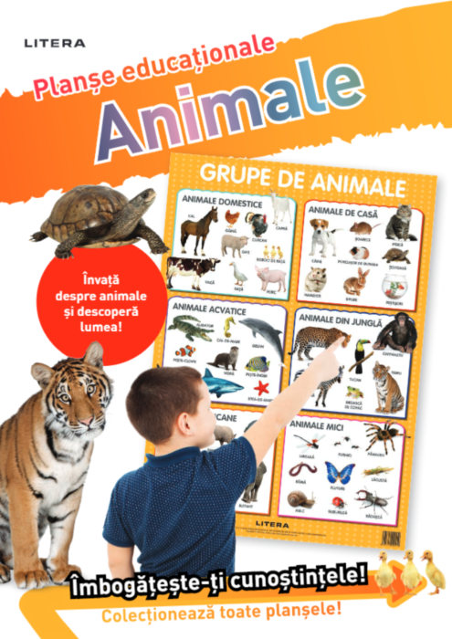 Animale. Planse educationale |