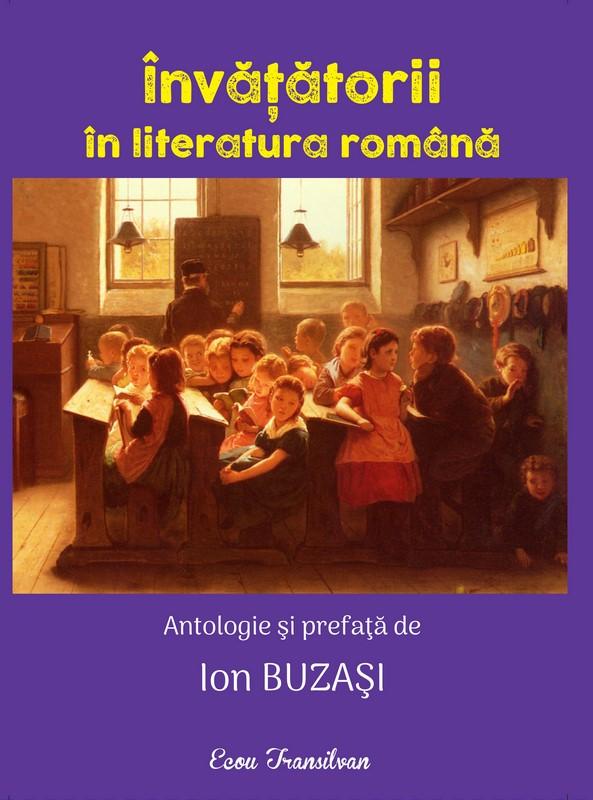 Invatatorii in literatura romana
