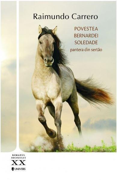 Povestea Bernardei Soledade | Raimundo Carrero